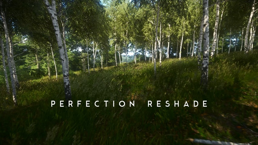 Perfection Reshade